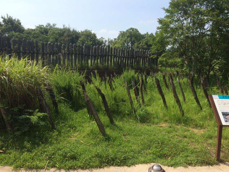 とがった木の枝や幹でバリケード「逆茂木(さかもぎ)」別名「乱杭(らんくい)」