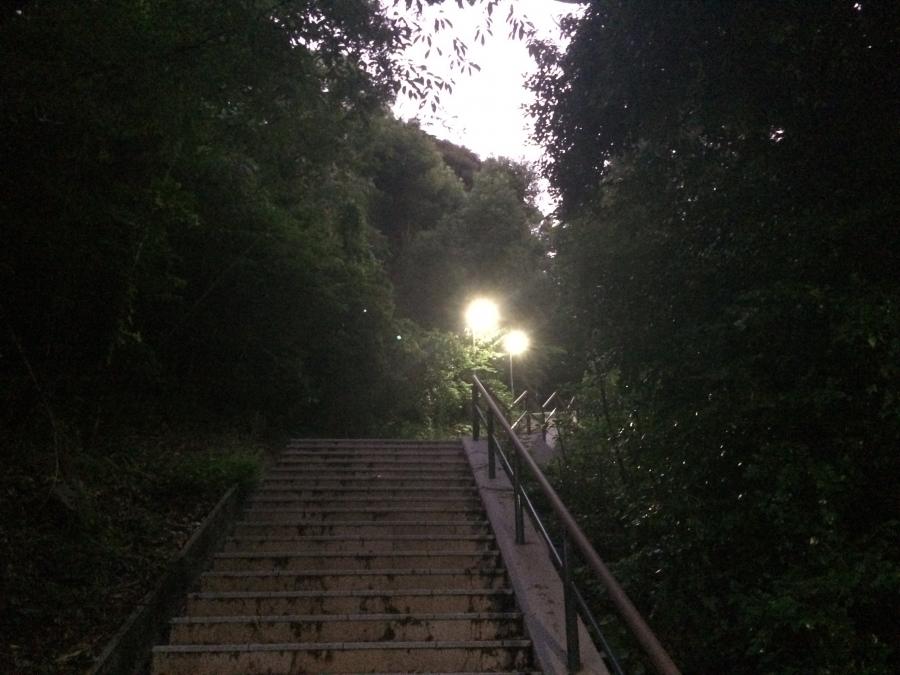 鍋冠山展望台へ向かう公園内の道