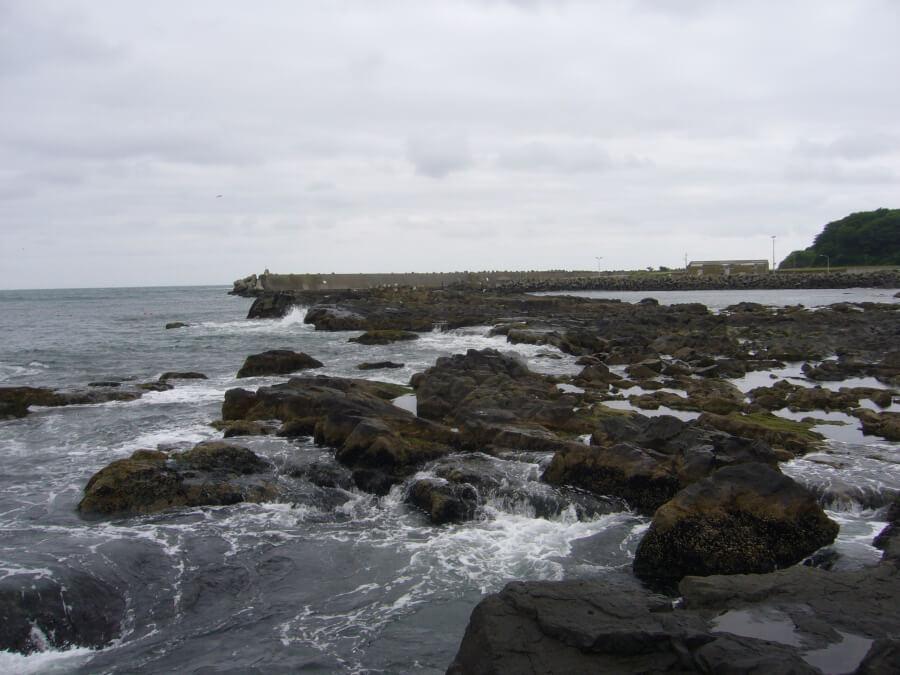 八戸港近くの海岸のゴツゴツした岩