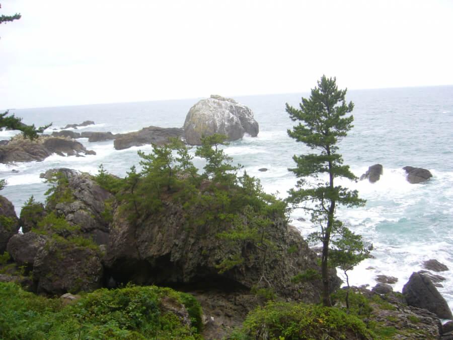 白岩の浮かぶ海岸