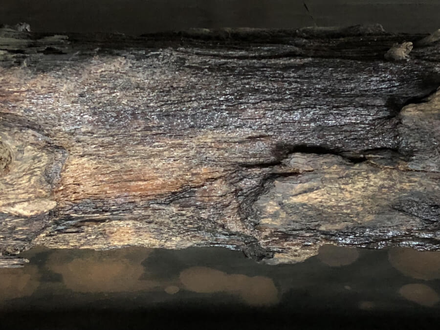 名古屋城の西北隅櫓の胴木