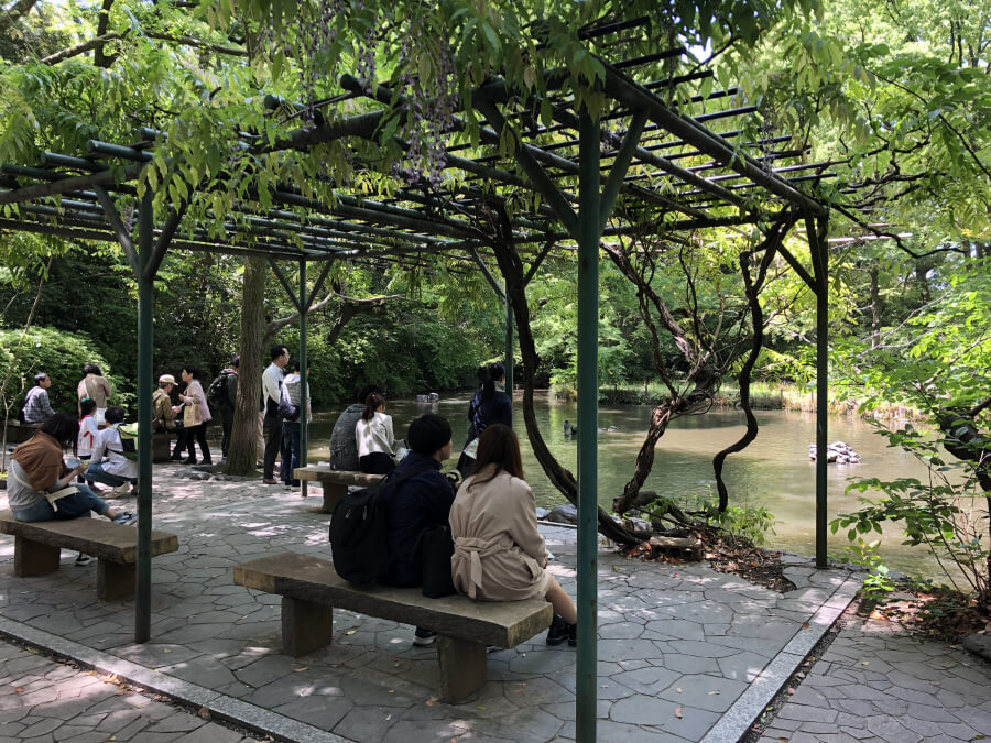 熱田神宮の南神池