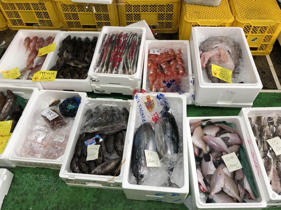 柳橋中央市場マルナカ食品センターの海産物
