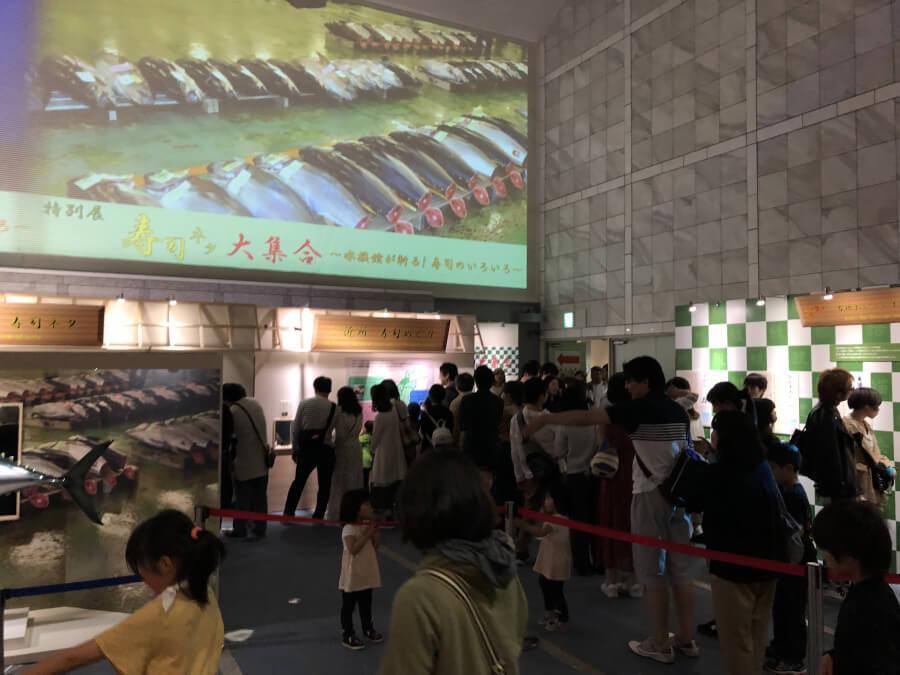 寿司ネタのコーナー|名古屋港水族館