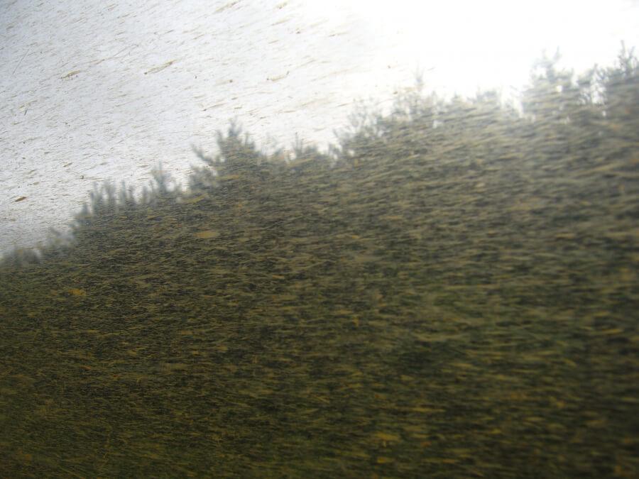 大湊線からの風景