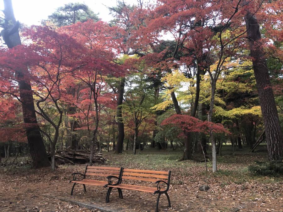 松屋敷の紅葉